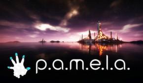 """P.A.M.E.L.A. или """"должно понравиться всем"""""""